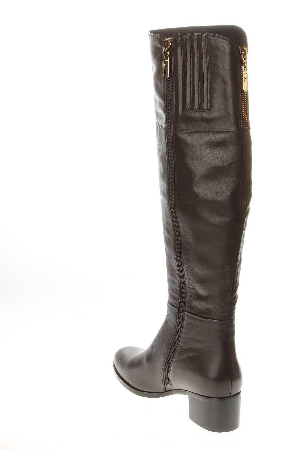 Covani | Женская Коричневая Обувь