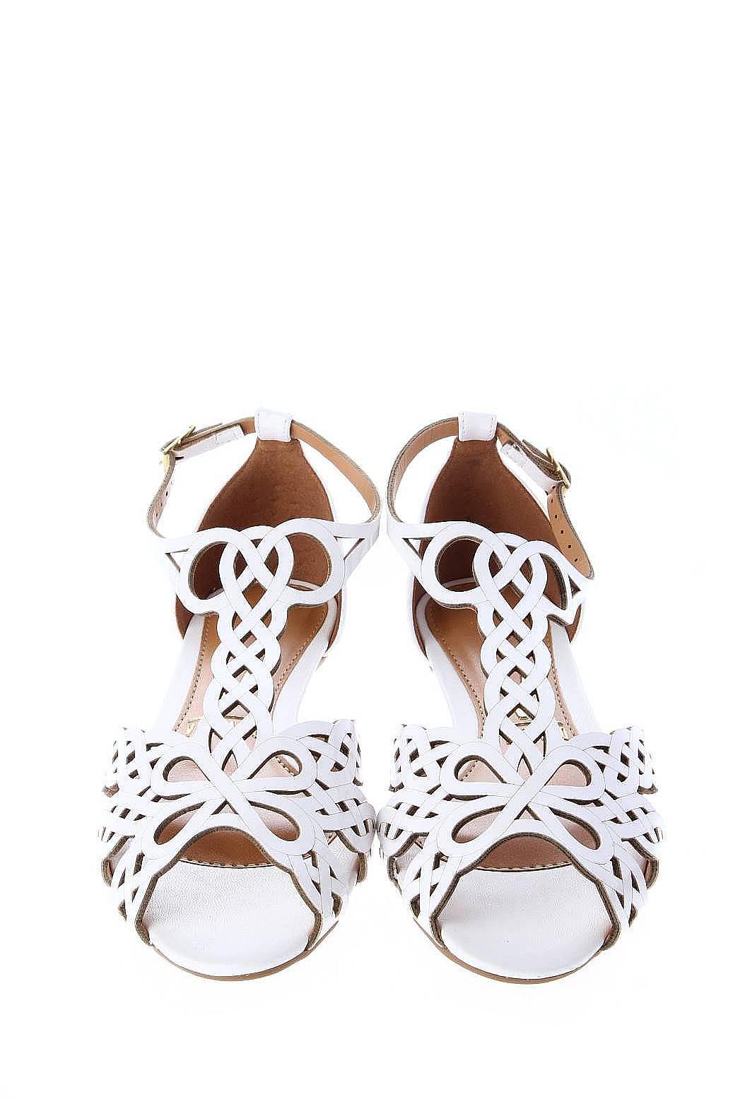 Мужская Обувь Детская Обувь Женская Обувь Сандалии: Vizzano Обувь
